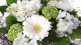 Kukka Ja Taide