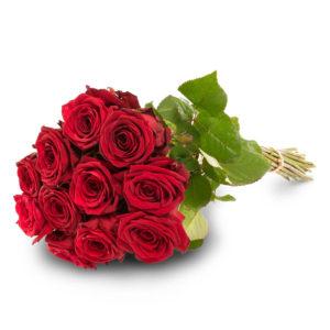 11 punaista ruusua
