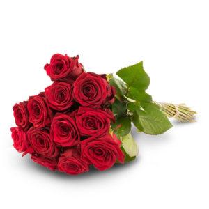12 punaista ruusua