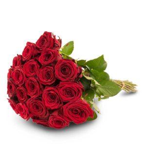20 punaista ruusua