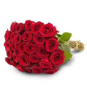 30 punaista ruusua