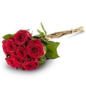 Kahdeksan punaista ruusua