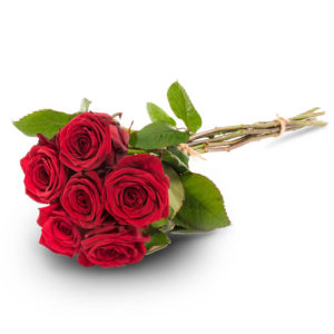 Kuusi punaista ruusua