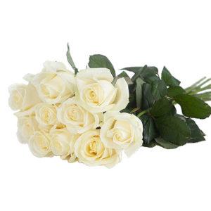 Kymmenen valkoista ruusua