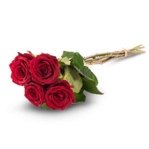 Neljä punaista ruusua