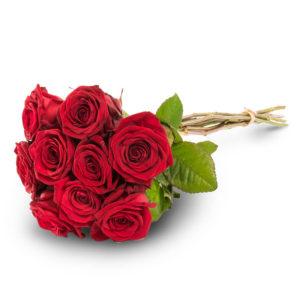 Yhdeksän punaista ruusua
