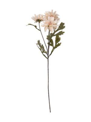 Daalia-koristekukka 65 cm